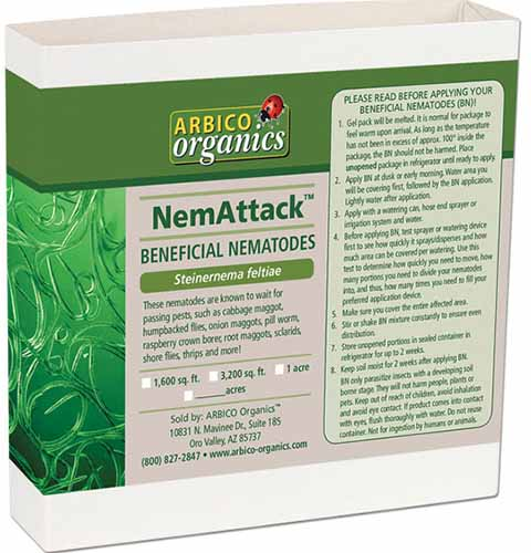 A close up square image of the packaging of NemAttack Sf Beneficial Nematodes isolated on a white background.