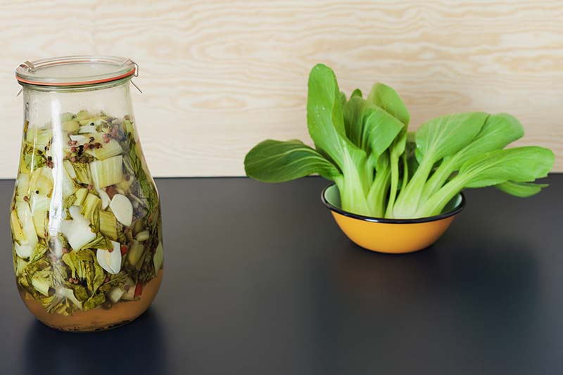 A close up horizontal image of a jar of pickled vegetables next to a bowl containing freshly harvested bok choy set on a dark surface.