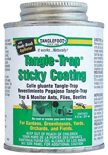 A close up square image of a can of Tangle-Trap Sticky Coating isolated on a white background.