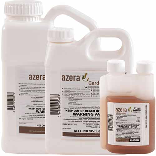 A close up square image of three different sized bottles of Azera Gardening Insecticide isolated on a white background.