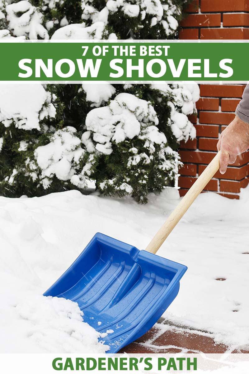 A close up vertical image of a hand from the right of the frame holding the wooden handle of a blue shovel moving snow from a brick surface. To the top and bottom of the frame is green and white printed text.