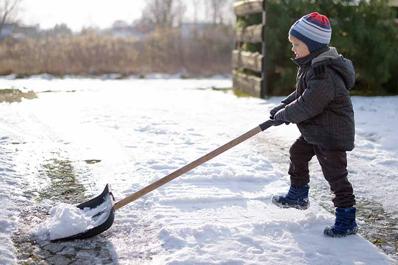 A close up horizontal image of a child using a large spade to clear snow from a pathway pictured in bright sunshine.
