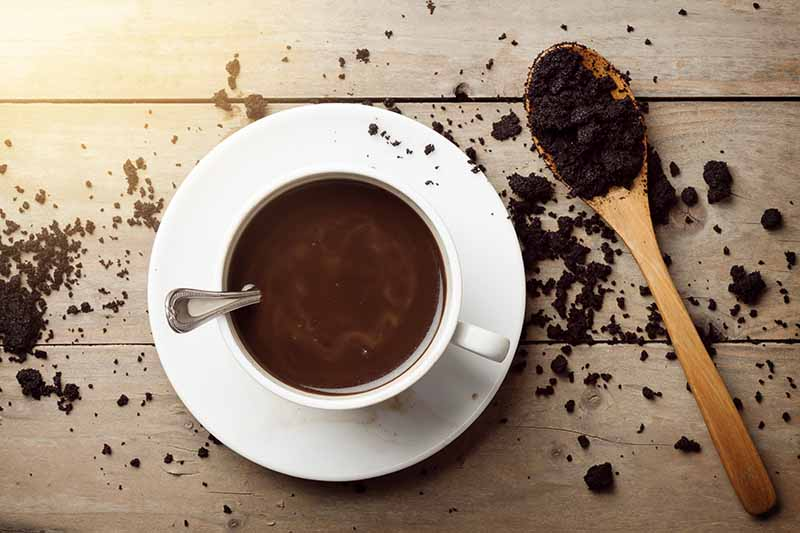 A close up horizontal image of a cup of dark coffee set on a wooden surface with a spoon and grounds scattered around.