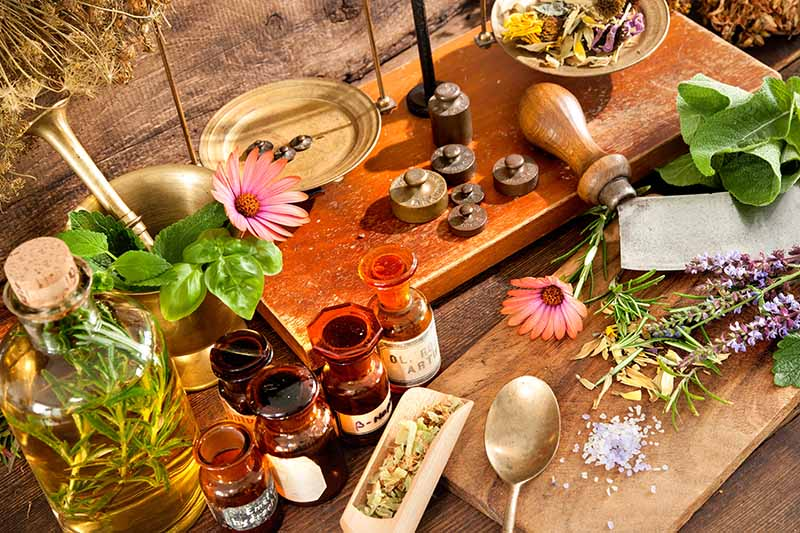 A close up horizontal image of herbs, tinctures, and tools in a herbal apothecary.