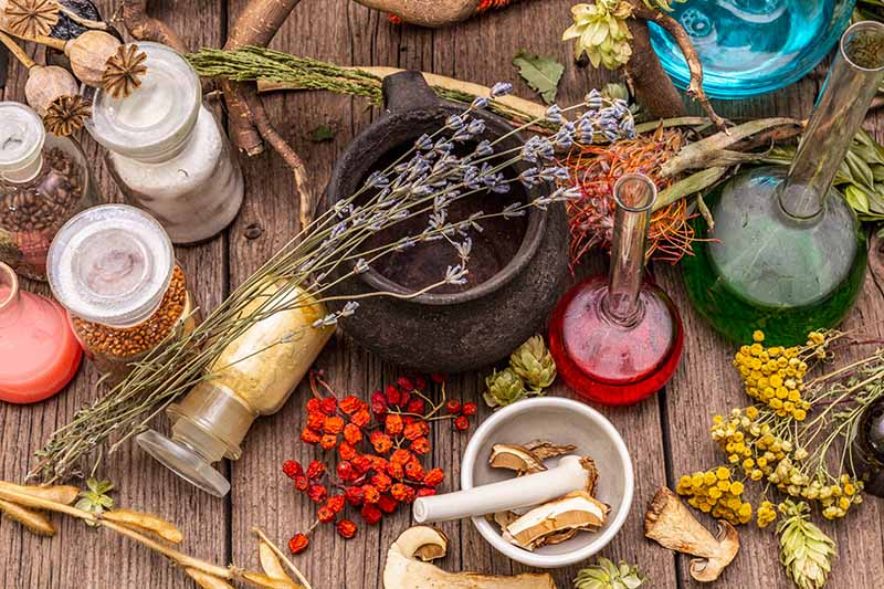 A close up horizontal image of herbs and spices in a medicinal kitchen.
