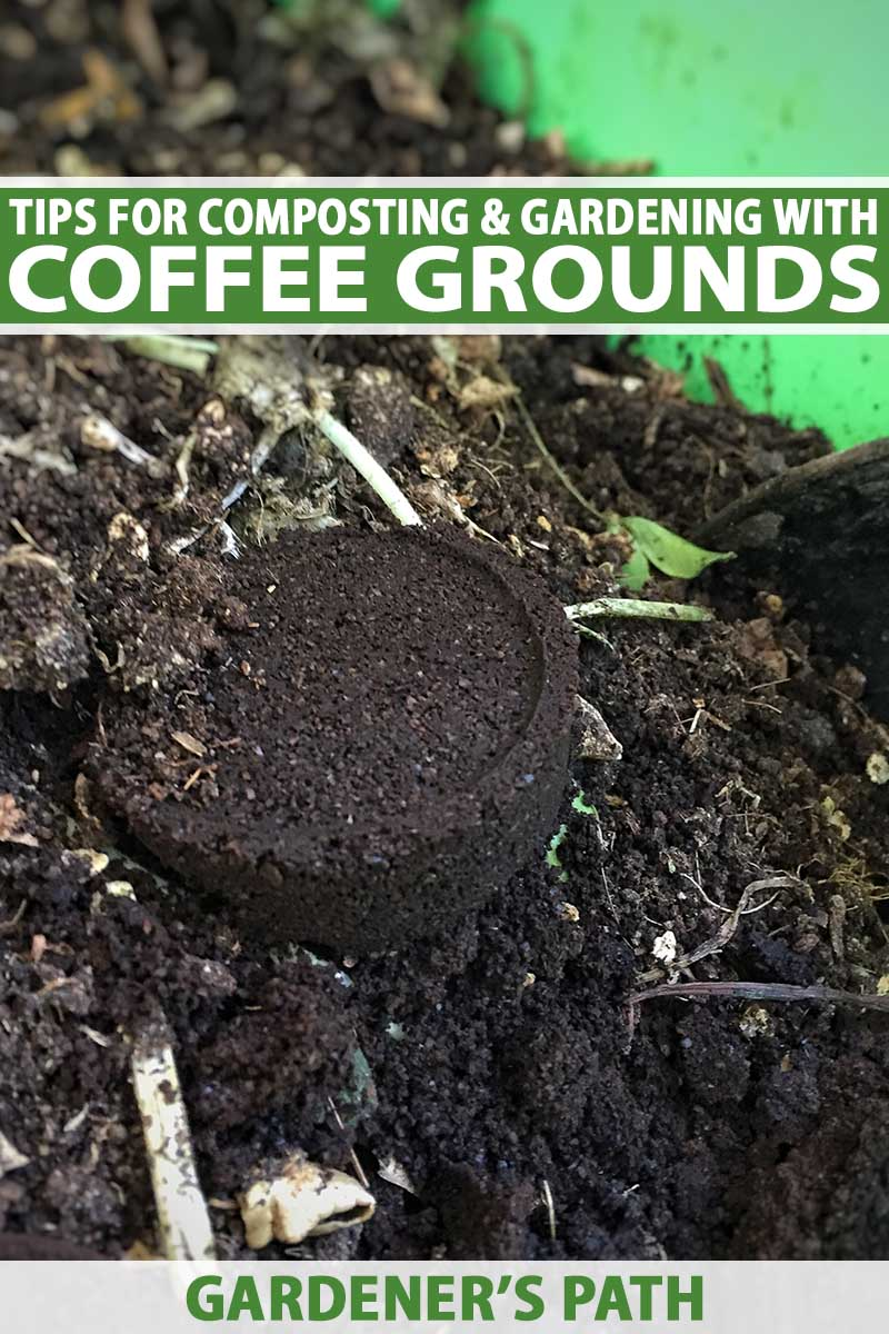 A close up vertical image of coffee grounds placed on a compost pile. To the top and bottom of the frame is green and white printed text.