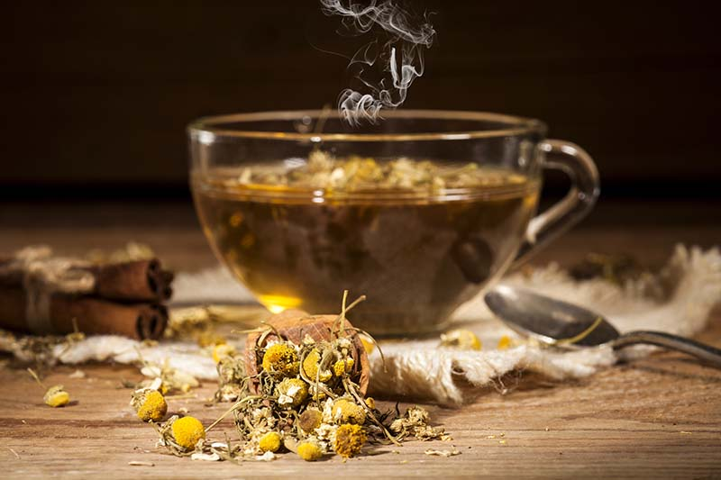 A close up horizontal image of a soothing glass of chamomile tea with flowers and dried herbs scattered around on a wooden surface.
