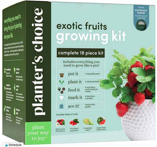 A close up square image of a the packaging of Planter's Choice Exotic Fruits Growing Kit isolated on a white background.