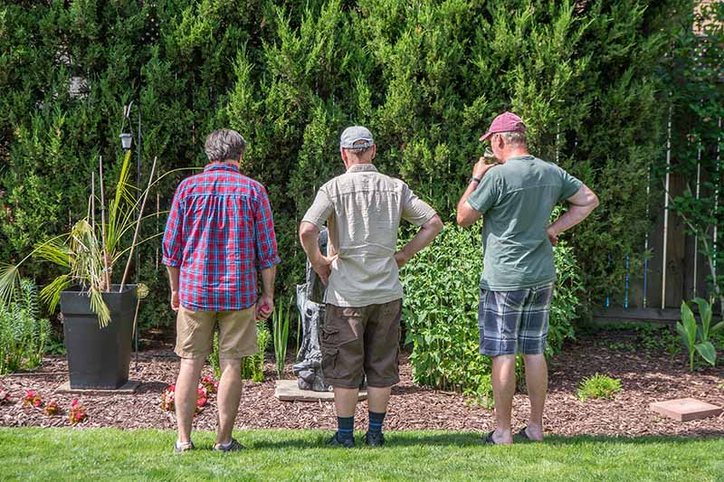 A horizontal image of three gardeners looking at a flower border to plan plantings.