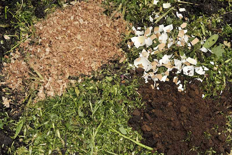 A close up horizontal image of coffee grounds, eggshells, woodchips, and garden clippings for a compost pile.