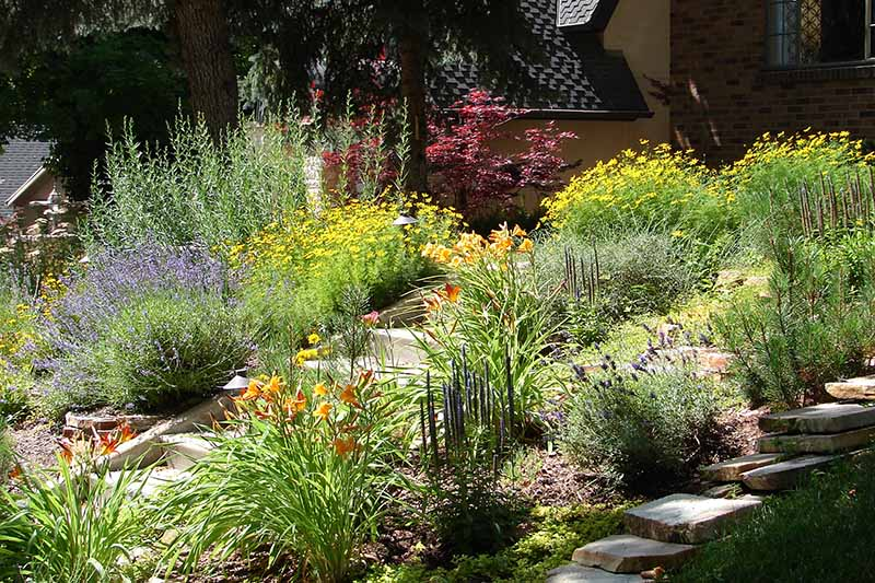 A horizontal image of colorful flower beds either side of a stairway up to a residence pictured in bright sunshine.