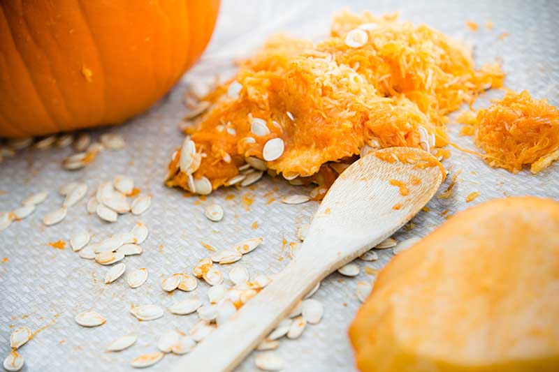 A close up horizontal image of pumpkin pepitas and flesh scooped out and set on a gray surface.