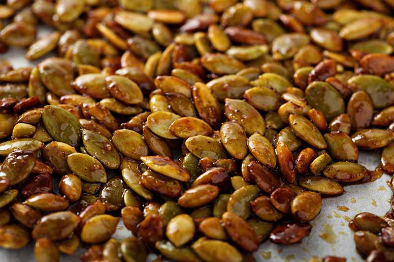 A close up horizontal image of roasted spicy pumpkin seeds on parchment paper.