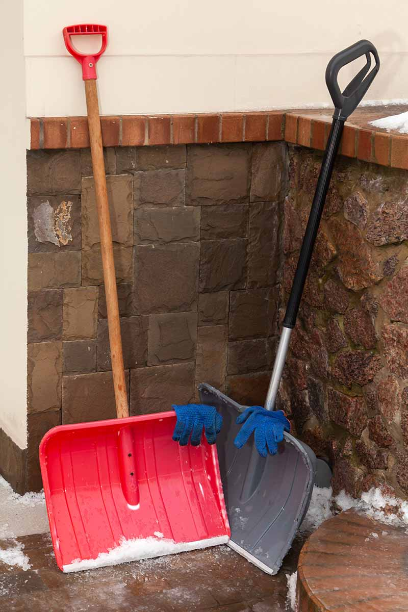 A close up vertical image of two snow shovels set leaning up against the side of a residence.