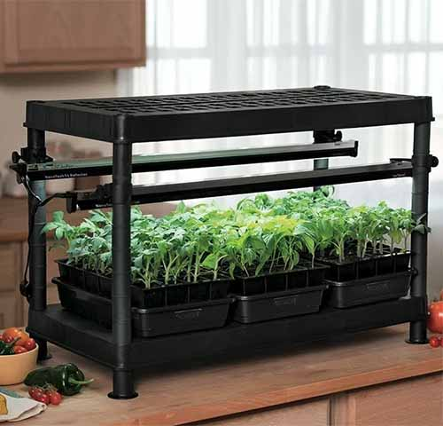 A close up square image of a stack-n-grow base unit set on a kitchen counter.
