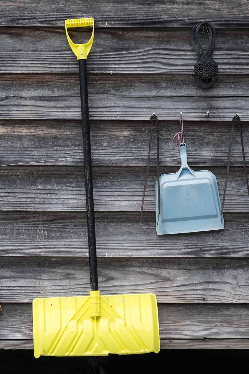 A close up vertical image of garden tools hanging from the side of a wooden fence.