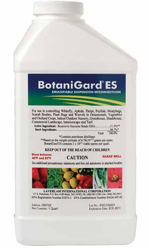 A close up vertical image of a bottle of BotaniGard ES isolated on a white background.