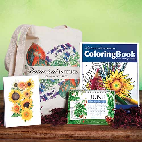 A close up square image of a fine art gift set with cards, a coloring book, a calendar, and a tote bag set on a wooden surface.