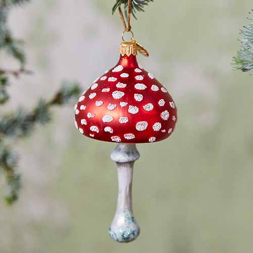 A close up square image of a small glass mushroom Christmas ornament on a soft focus background.