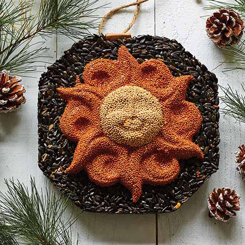 A close up square image of a wild birdseed wreath set on a wooden surface.
